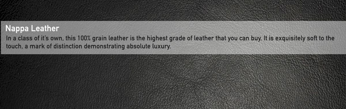 Nappa leather 2